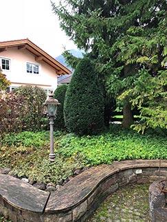 Bäume im Garten