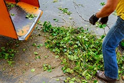 Mann entsorgt Blätter